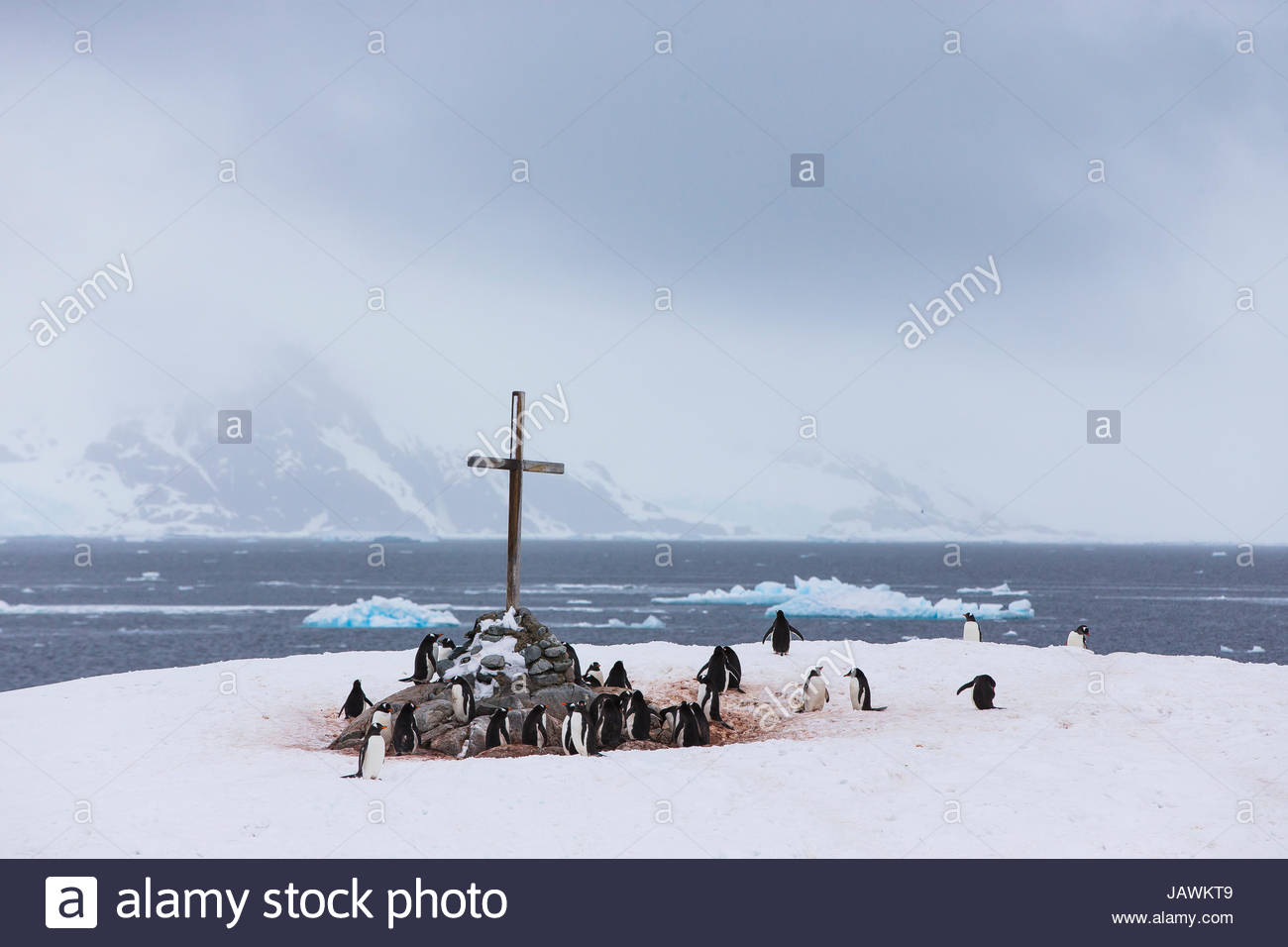 A cross marks the British Antarctic Monument Trust on Petermann Island. - Stock Image