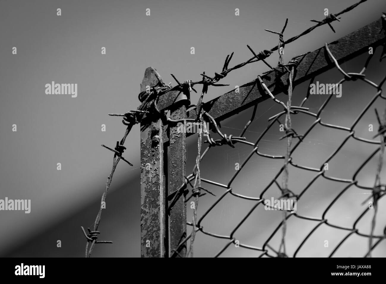 Rusty old fences of barb wire over blue sky - Stock Image