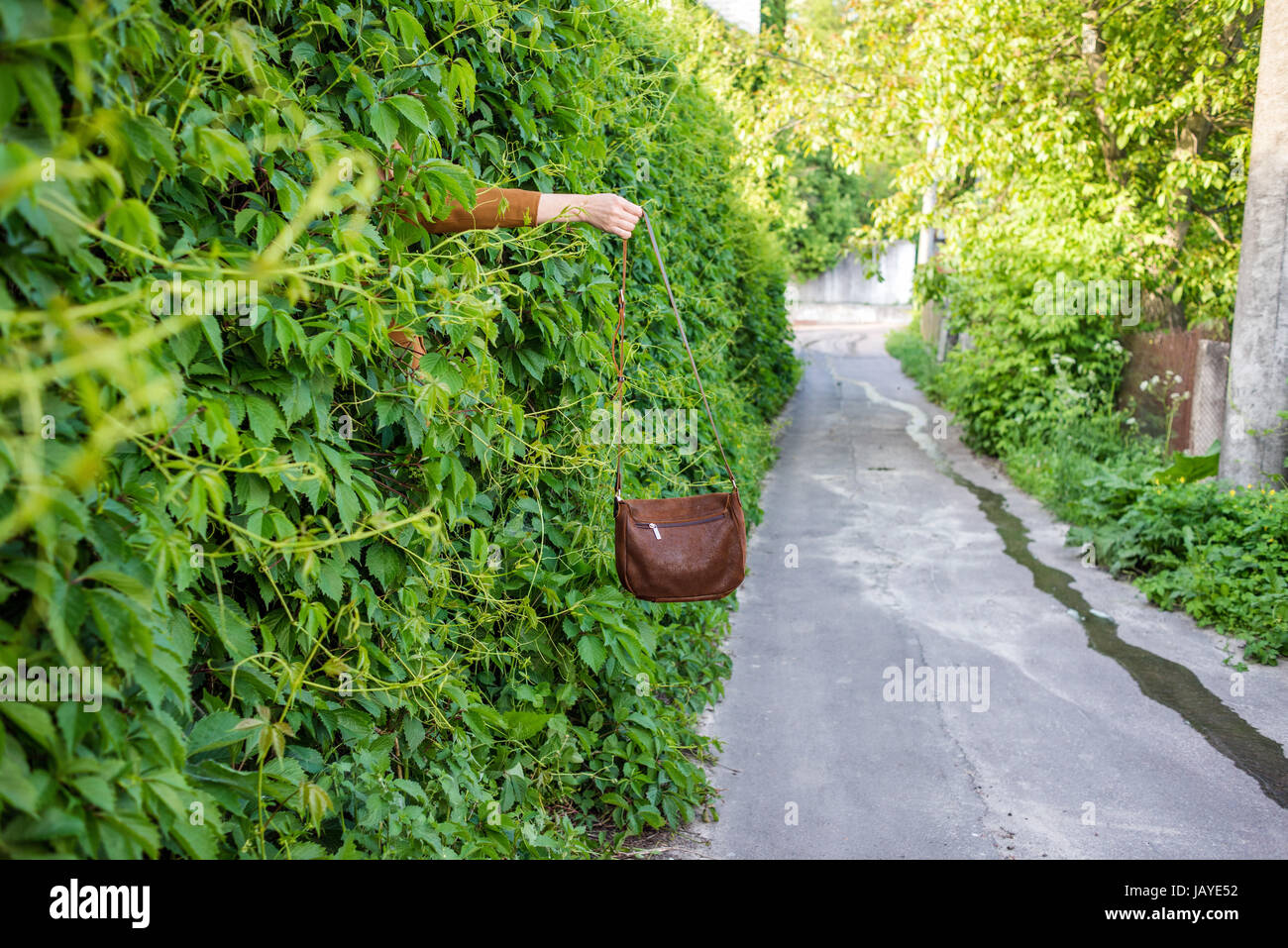 A woman going out from nature - Stock Image