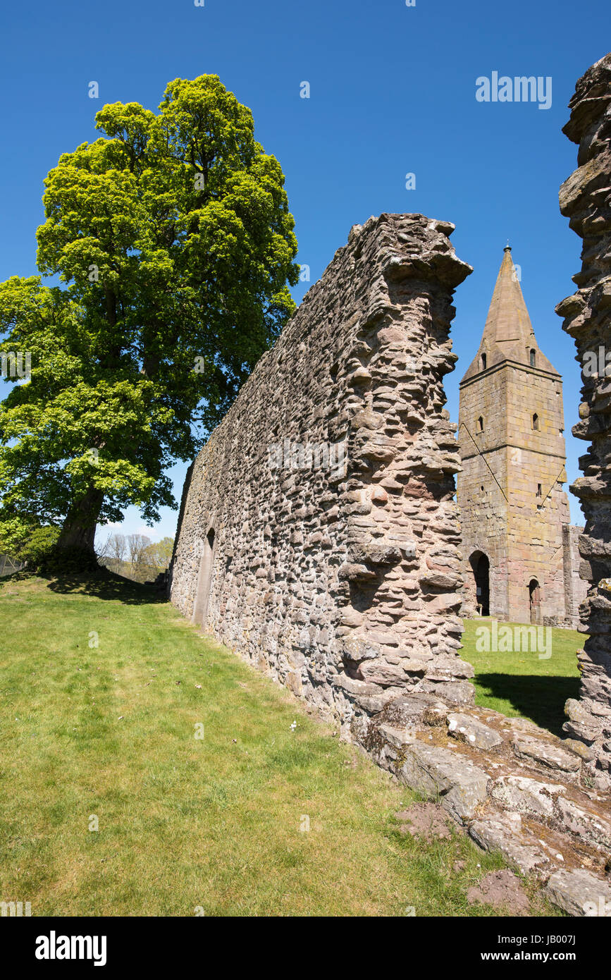 Restenneth Abbey near Forfar, Angus, Scotland. It is believed to have been founded by Nechtan, king of the Picts - Stock Image