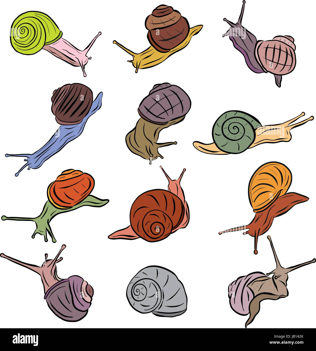 Line Art Illustration Snail Vectors Colored - Stock Vector