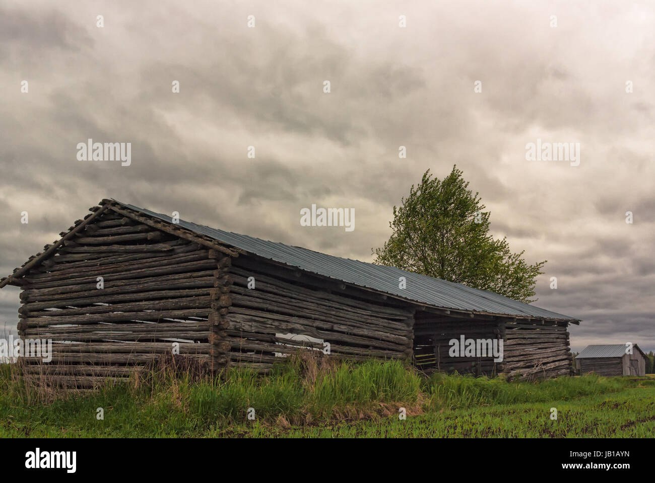 Two old barn houses on the summer fields of the Northern Finland. The stormy clouds are gathering upon them predicting - Stock Image
