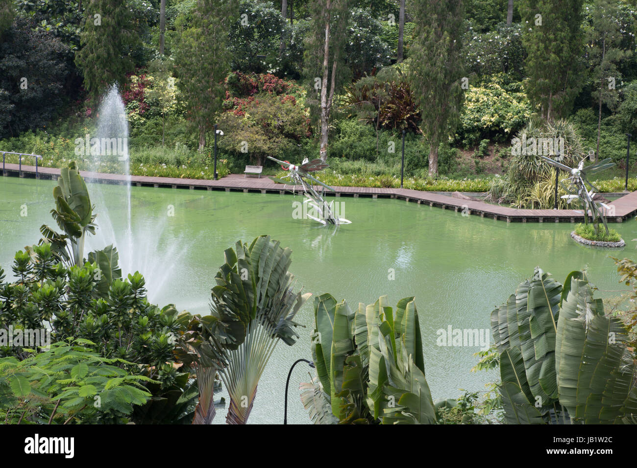 Dragonfly pond in Gardens by the Bay Singapore Stock Photo
