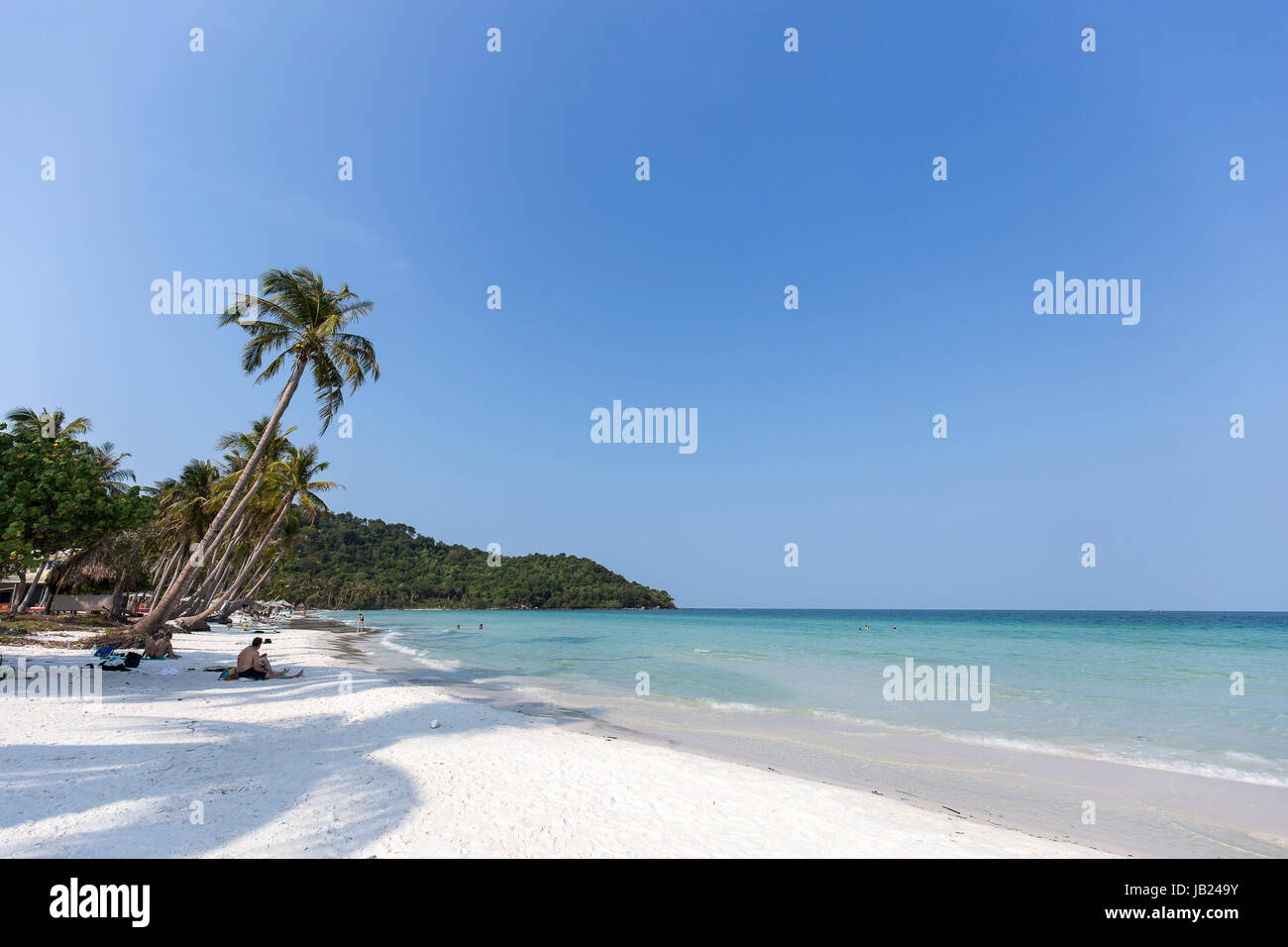 Summer vacation holiday in Phu Quoc island white sand beach Coconut trees / Palm trees clear blue sky Stock Photo