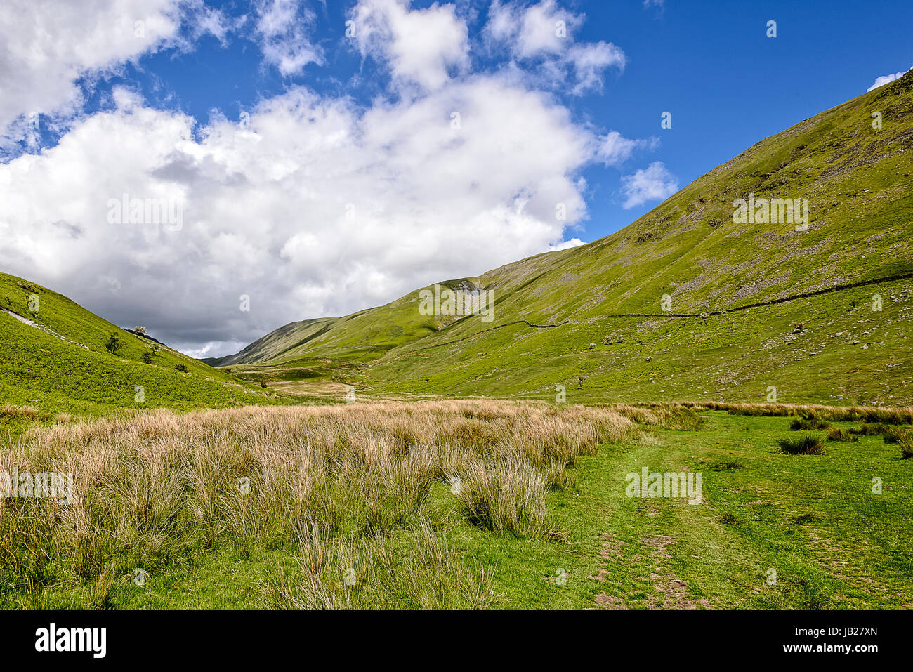 View down Hagg Ghyll above Troutbeck village, Lake District - Stock Image