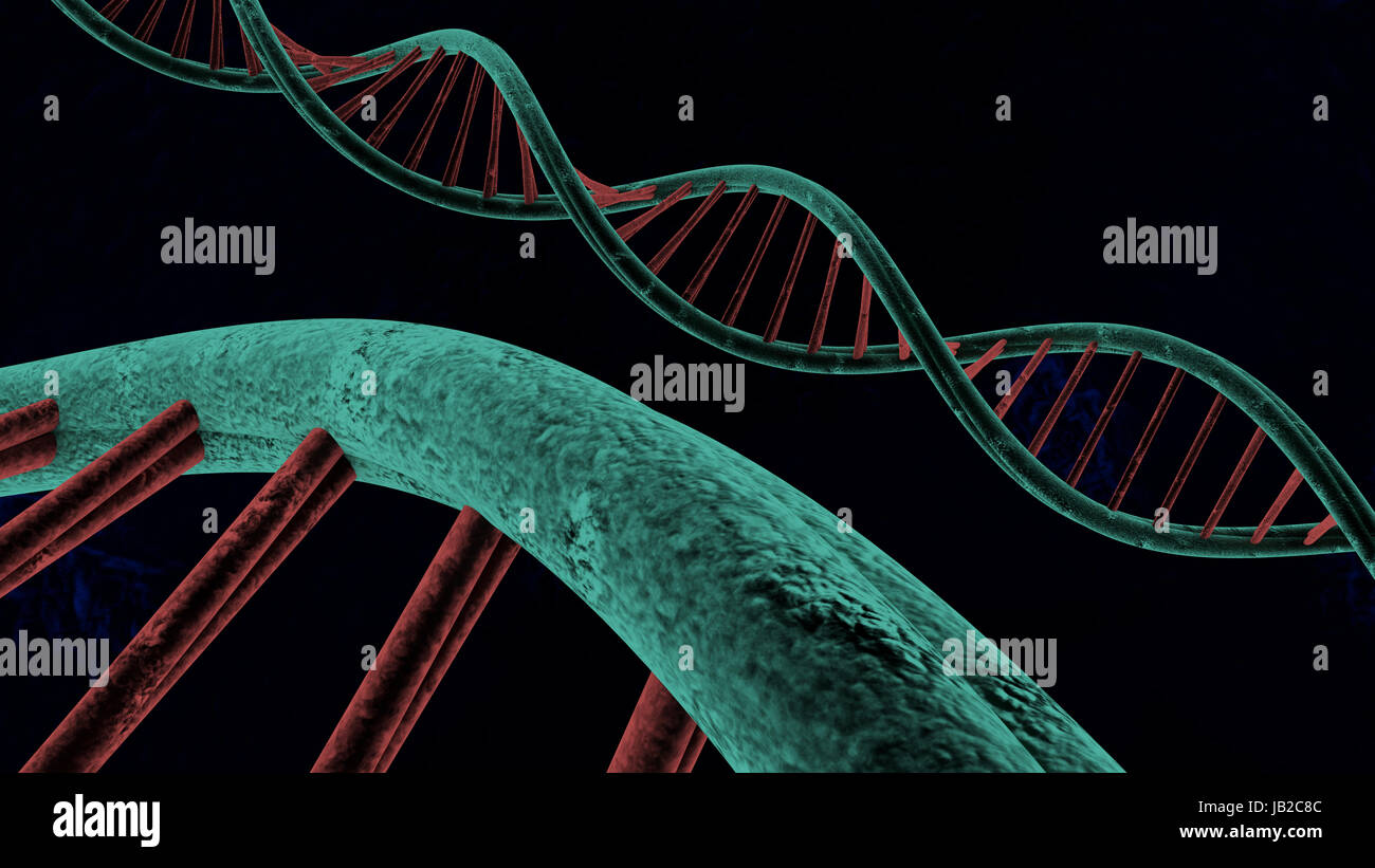 chains of deoxyribonucleic acid made in 3D - Stock Image