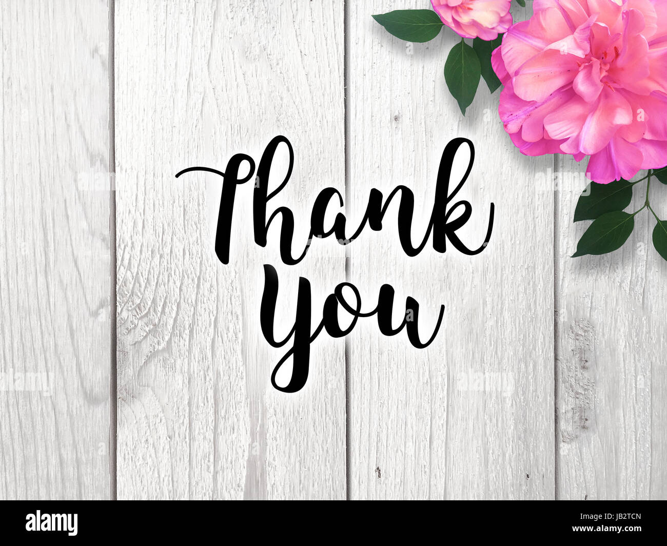 thank you card with colorful pink flower stock image