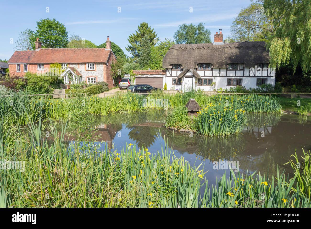 The Duck Pond, Oakley, Hampshire, England, United Kingdom - Stock Image