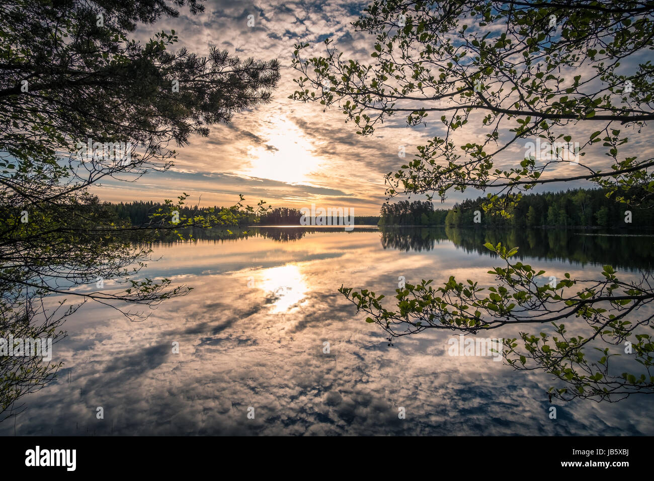 Scenic landscape with lake and sunrise at summer morning in national park Liesjärvi, Finland - Stock Image
