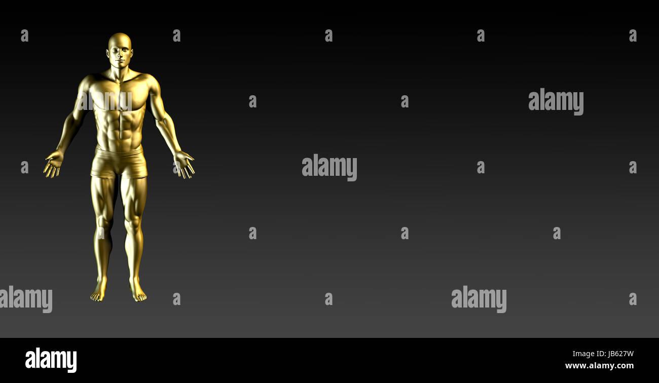 Human Body Presentation Background for Medical Anatomy Art Stock ...