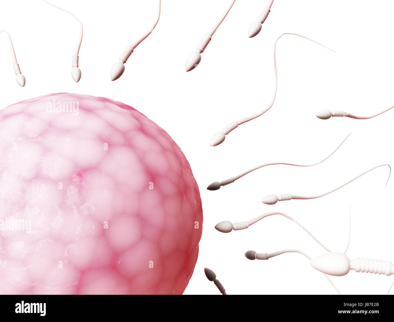 Girls laptop and sperm depletion criying when sex