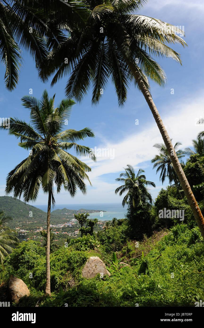 Aerial view of a beach Lamai, Thailand - Stock Image