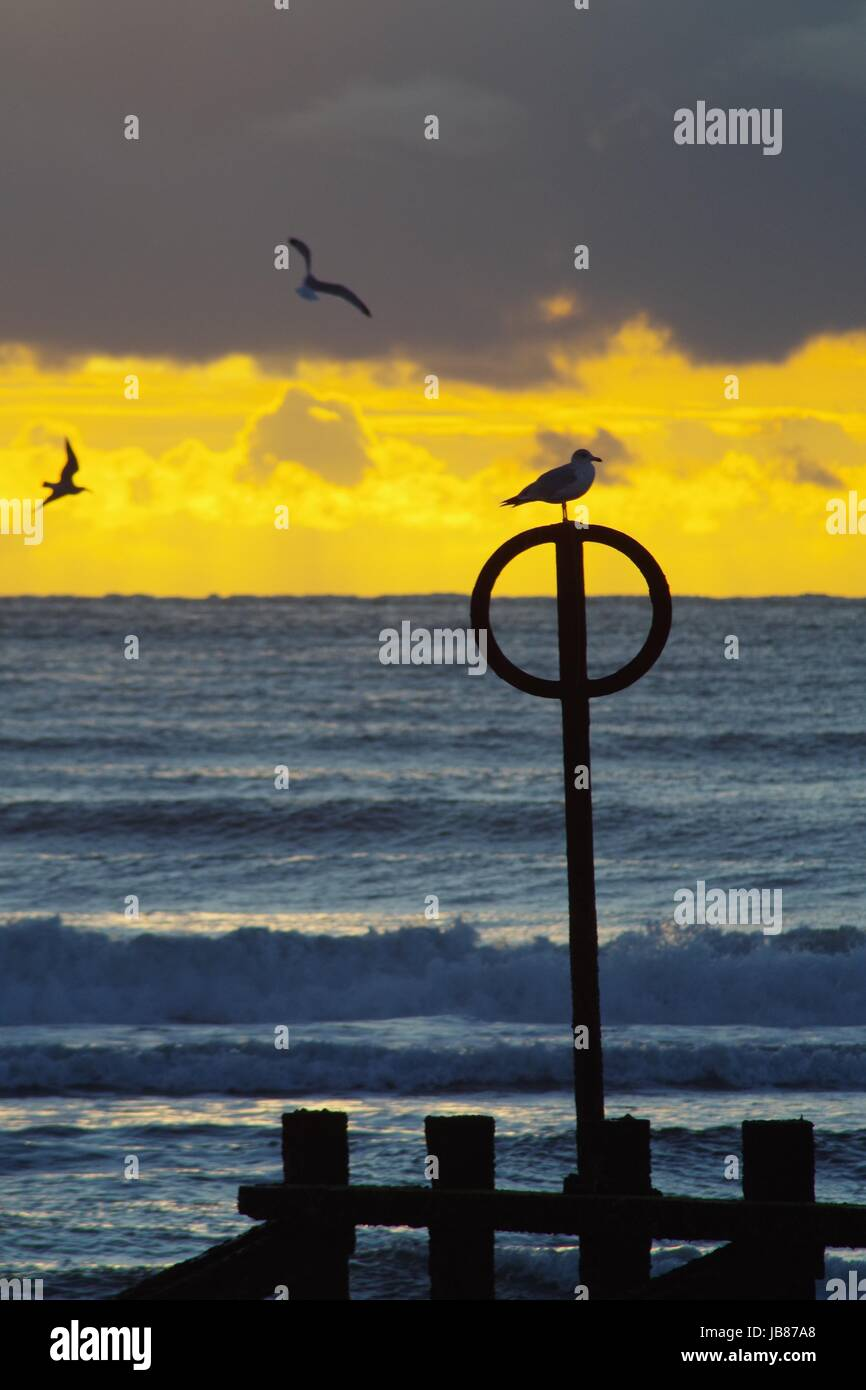 Golden Spring Sunrise above the North Sea. Aberdeen Beach, Scotland. April 2017. - Stock Image