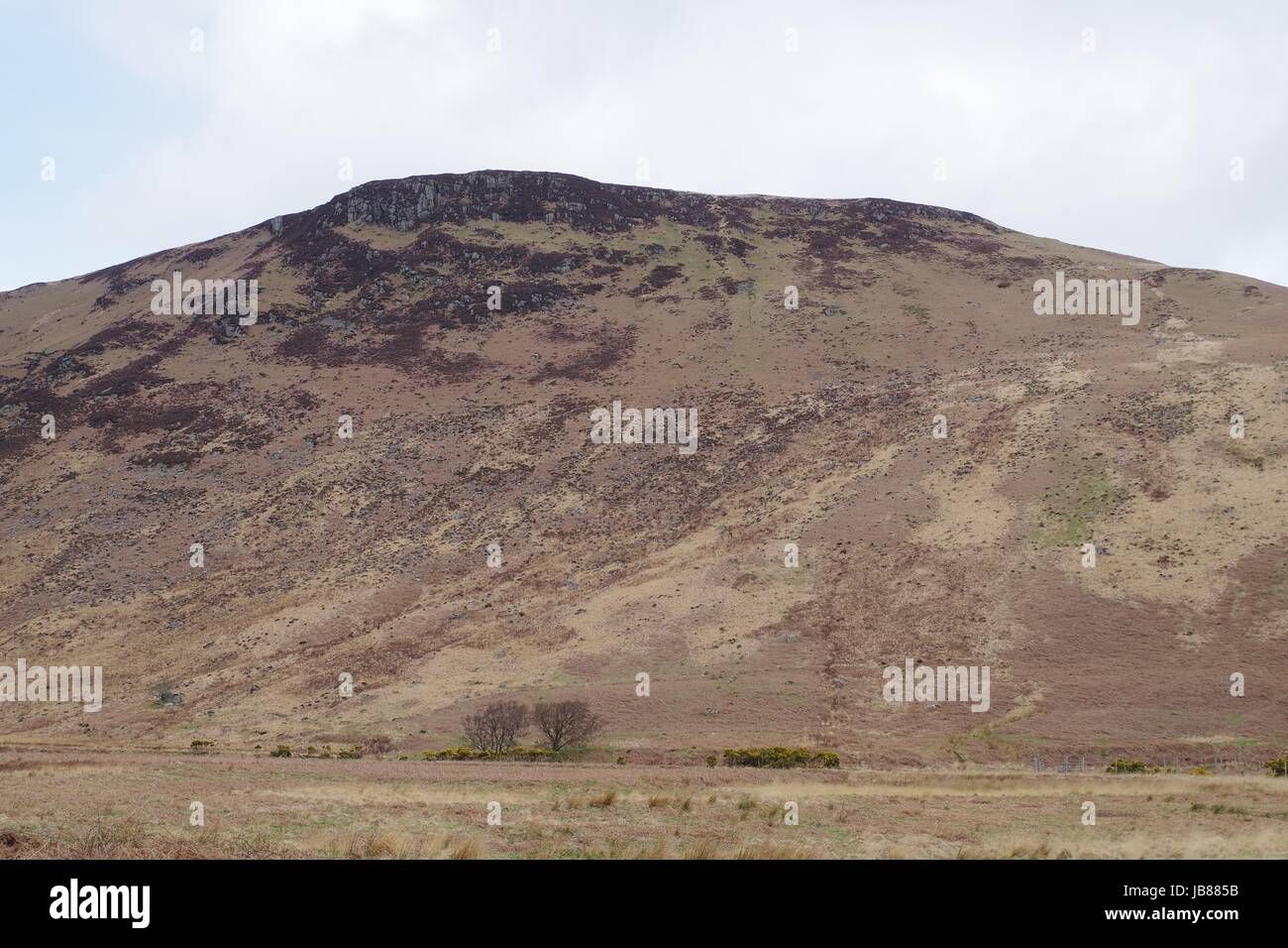 Creag Rosa Hill Side and Valley Floor, Glen Rosa, Brodrick. Isle of Arran, Scotland. April 2017. - Stock Image
