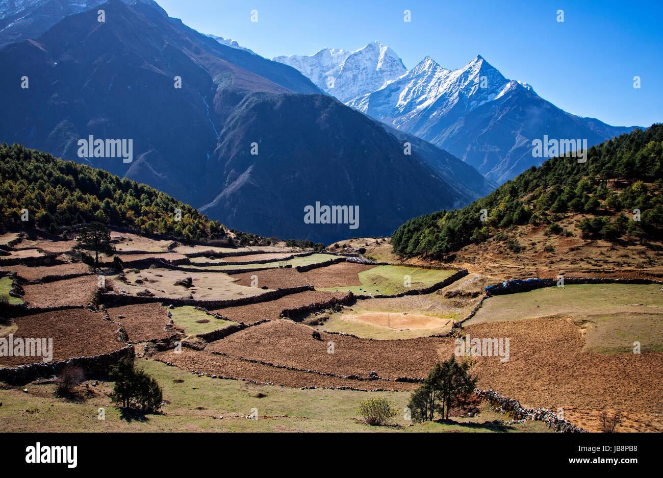 Terraced farm fields near Namche Bazaar under the shadow of Thamserku (6608 meters) in Sagarmatha National Park, - Stock Image