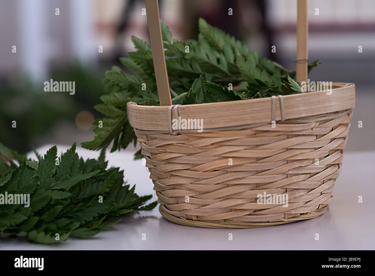 Green Leaves Of Fern In Basket Rustic Wedding Decoration Stock