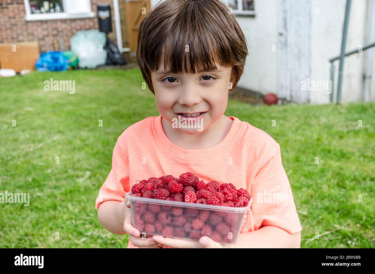 A young boy holds a plastic tub of raspberries whcih he has picked at home in his back garden. - Stock Image