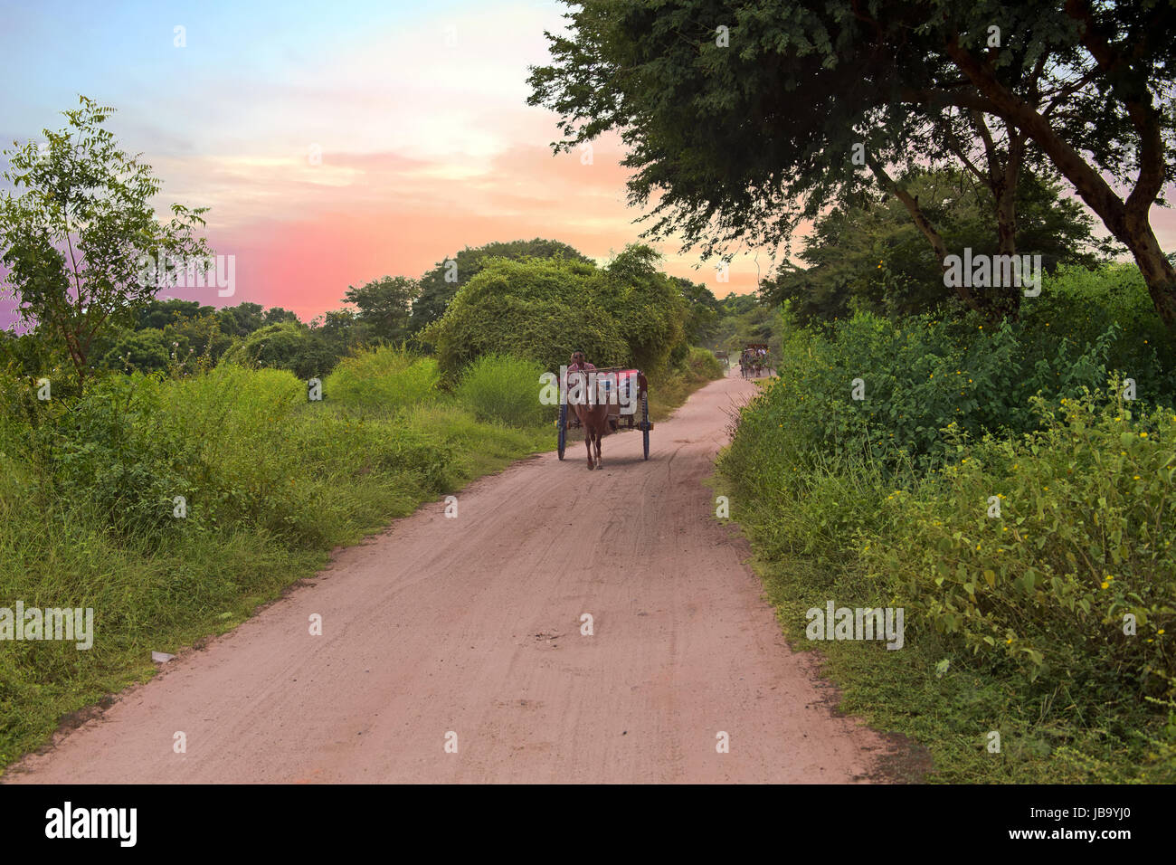 Riding horse cart on dusty road in Bagan, Myanmar at sunset - Stock Image