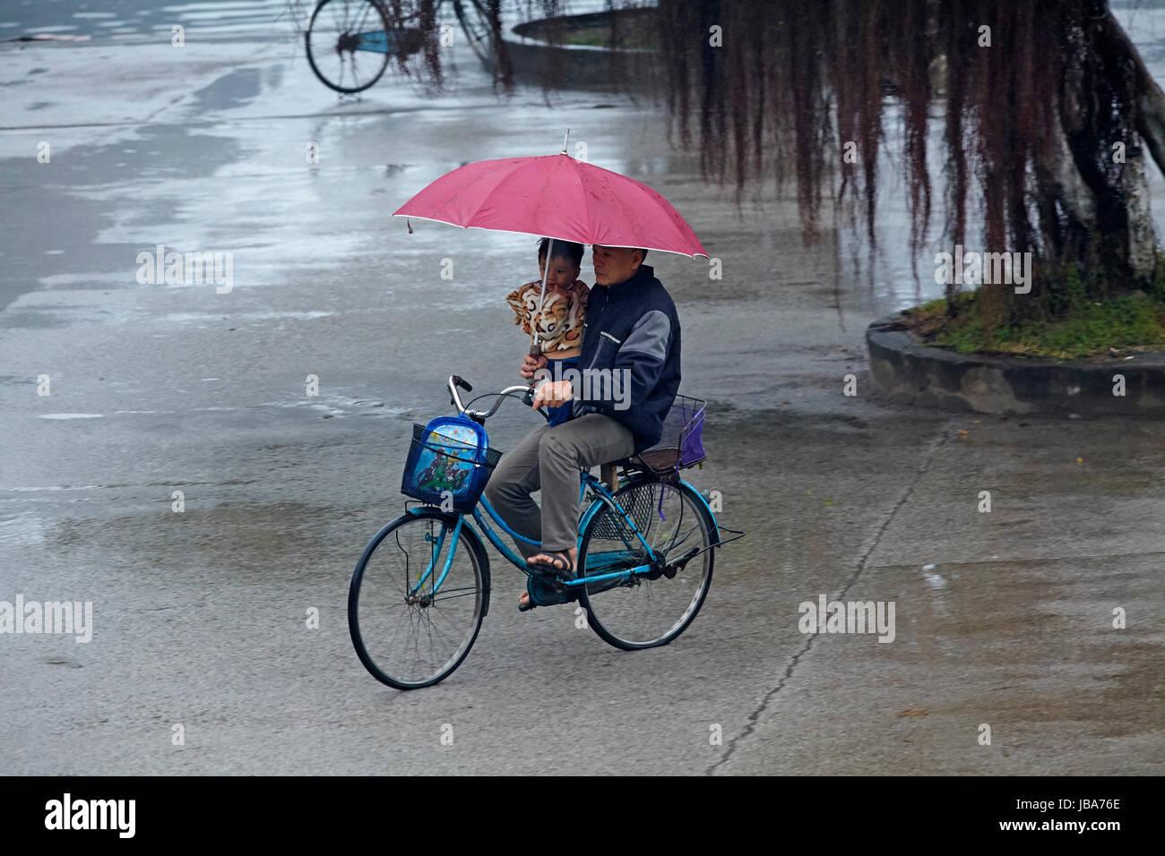 Man carrying child and umbrella, cycling in the rain, Ninh Binh, Vietnam - Stock Image