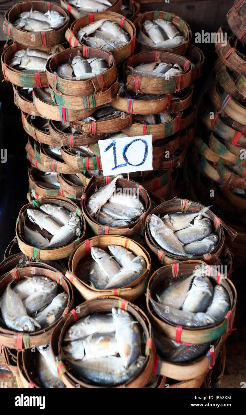Fische auf dem Thewet Markt im Zentrum der Hauptstadt Bangkok in Thailand. - Stock Image