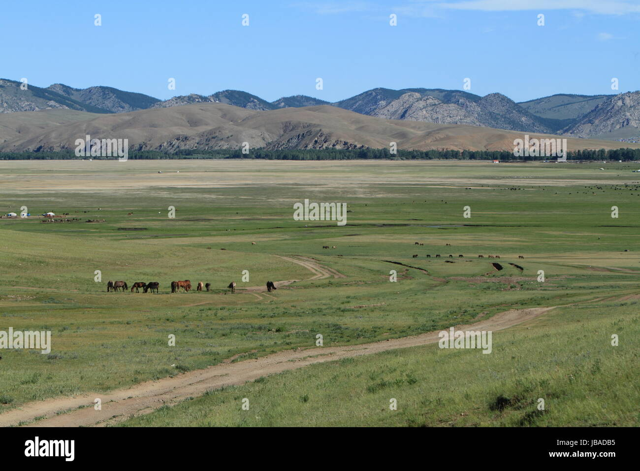 steppe infinite - Stock Image