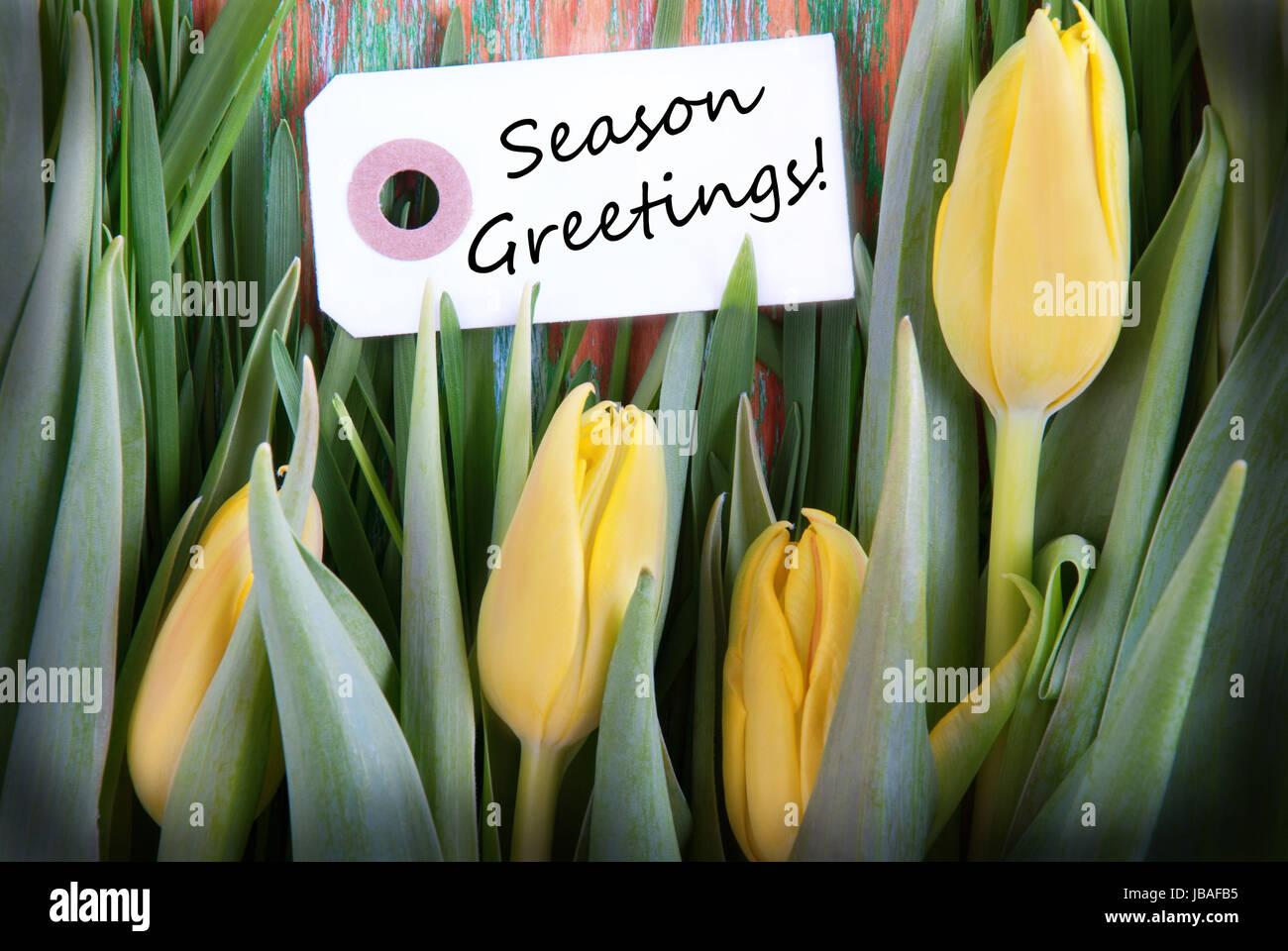 Season Greetings Stock Photos Season Greetings Stock Images Alamy