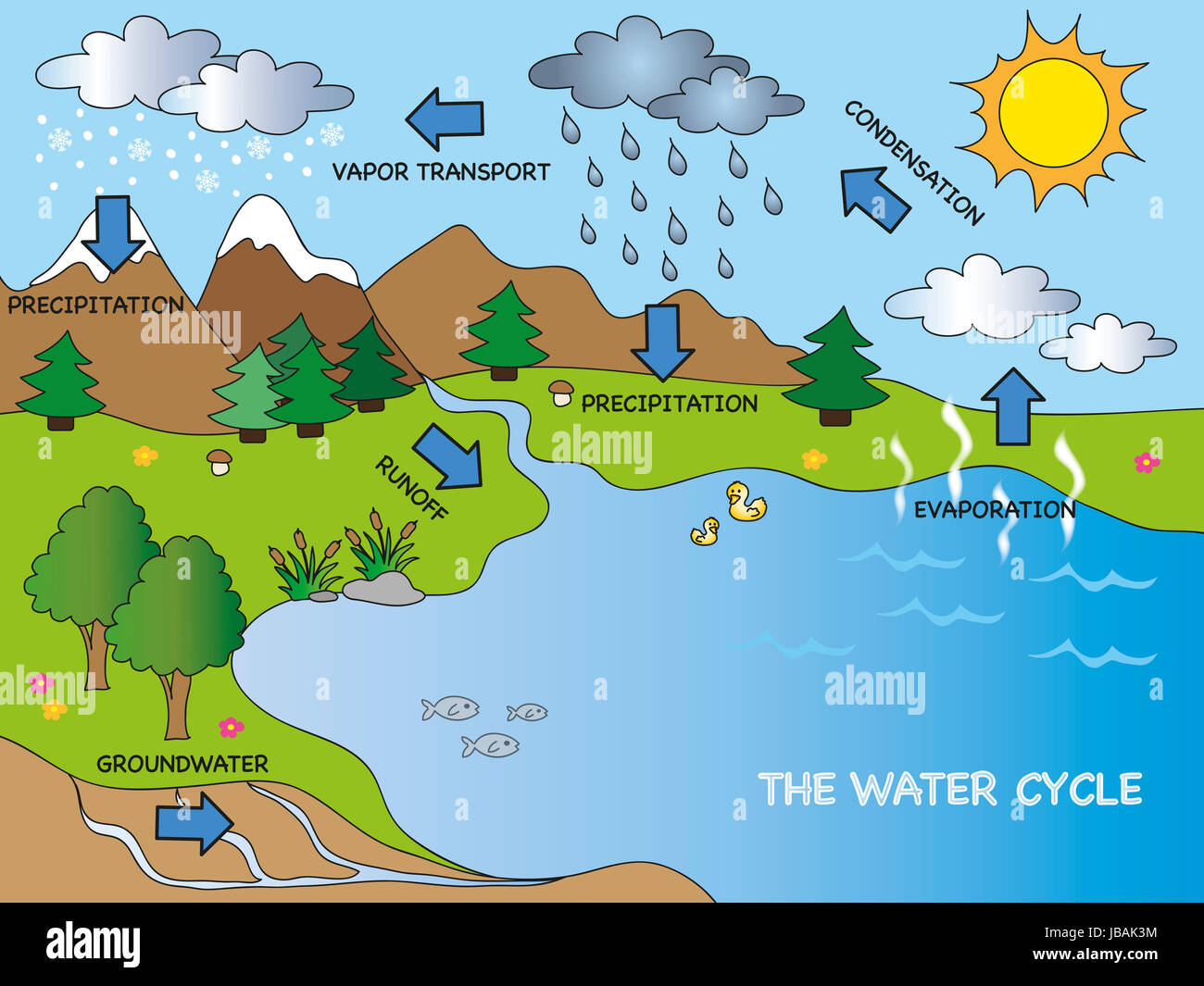 Illustration of funny water cycle stock image