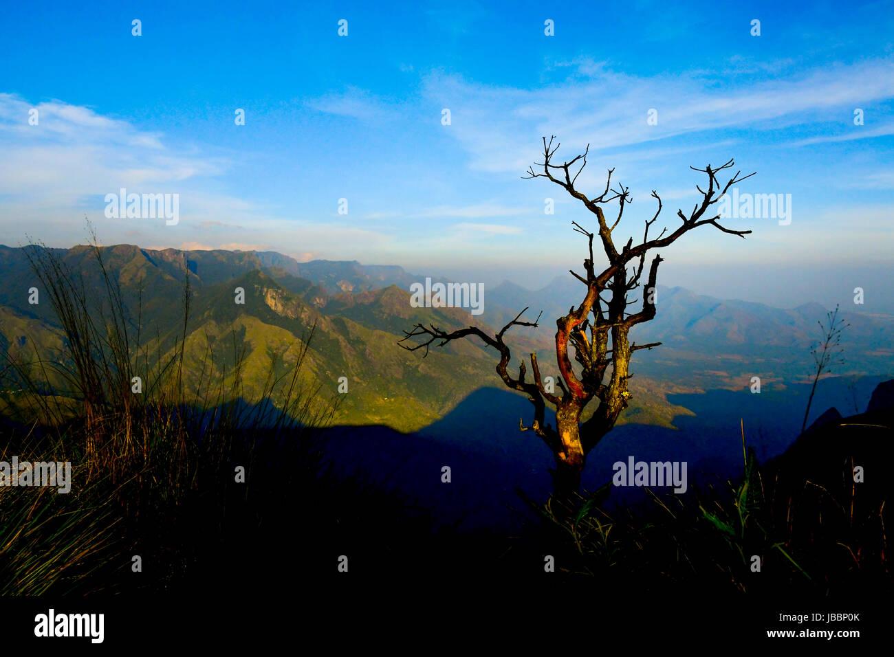 Stock Photo - Beautiful Kerala Landscape and Nature Sceneries - Stock Image