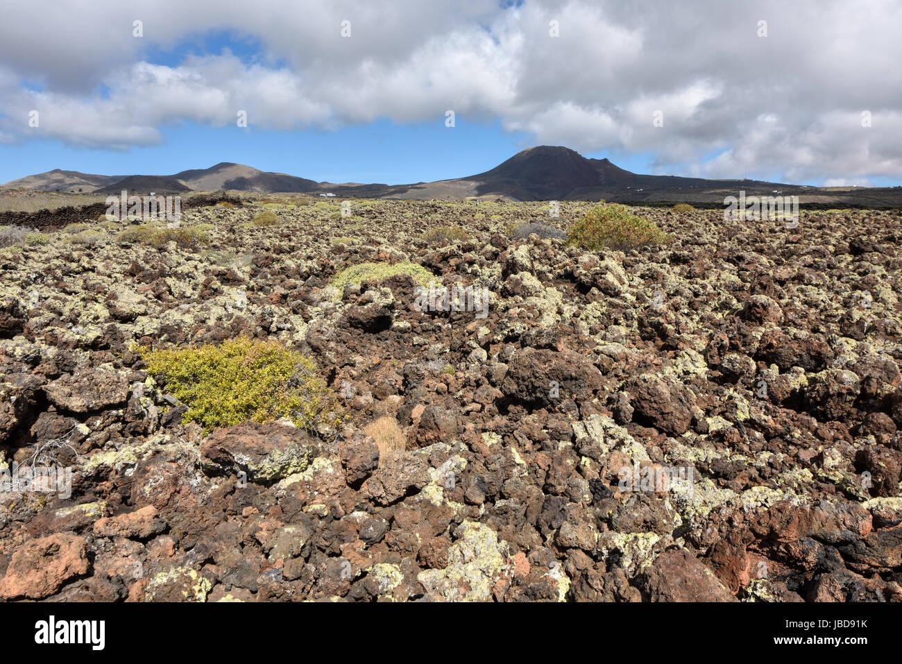 Interesting volcanic landscape in Lanzarote near Jameos del Agua cave. Canary Islands, Spain - Stock Image