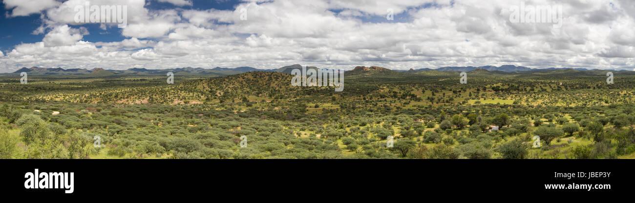Panorama of the namibian grassland in the rain season, Namibia, Africa - Stock Image