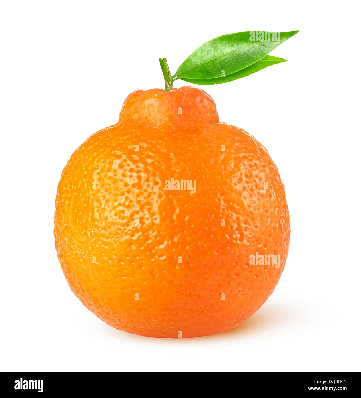 Isolated citrus fruit. One minneola tangelo with leaves isolated on white background with clipping path - Stock Image