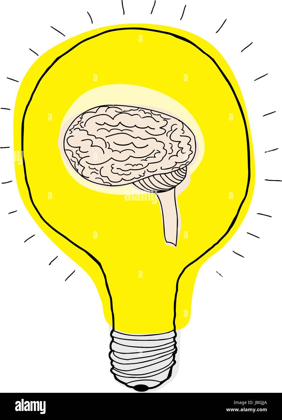 human brain inside light bulb over white background stock photo