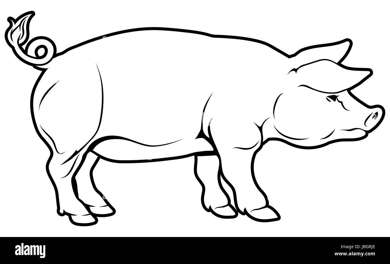 An illustration of a pig, could be a label for pork Stock Photo