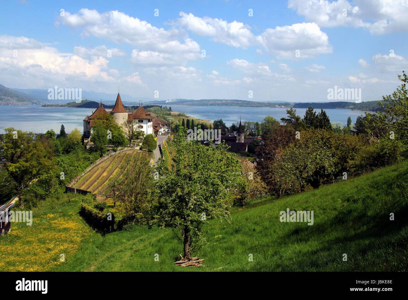 view of erlach and lake biel - Stock Image
