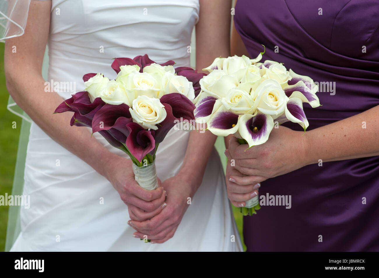 Bride And Bridesmaid Holding Purple And White Wedding Bouquets Stock