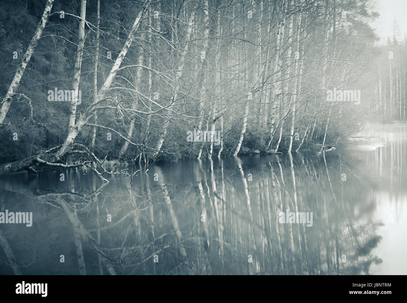 Foggy landscape with gloomy mood and lake at toned photo - Stock Image