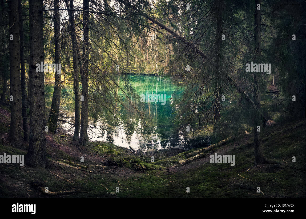 Natural spring in southern Finland. Water is so clear that it´s turquoise color. Water can be drink directly - Stock Image