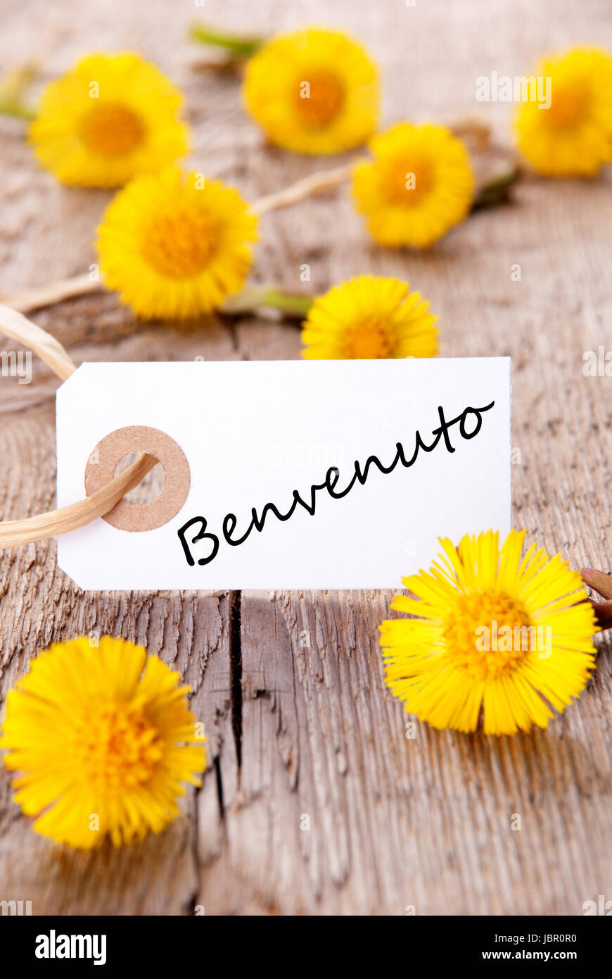 Yellow Flowers With The Italian Word Benvenuto Which Means Welcome