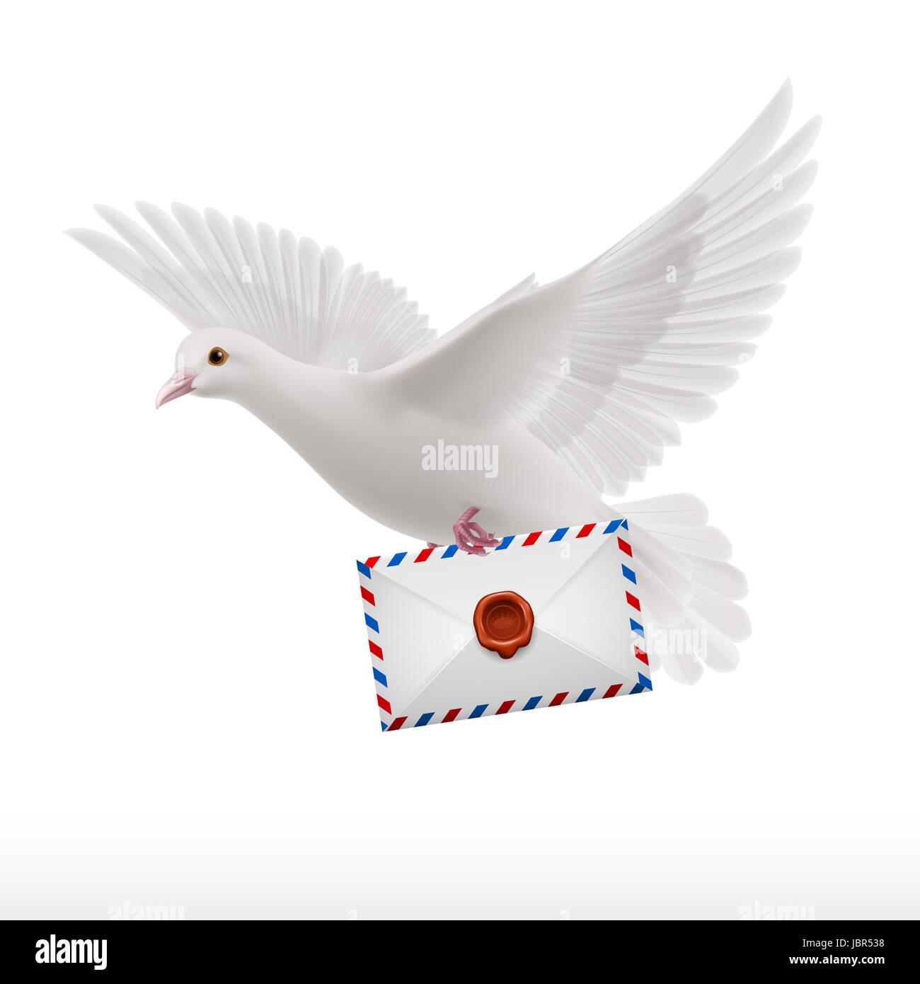 Гифы голубь с конвертом и розой, утро картинки веселые