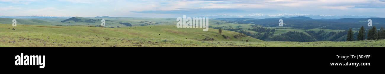 Panoramic view of Northeast Oregon's Zumwalt Prairie, Wallowa Mountains and Idaho's Seven Devils Mountains. - Stock Image