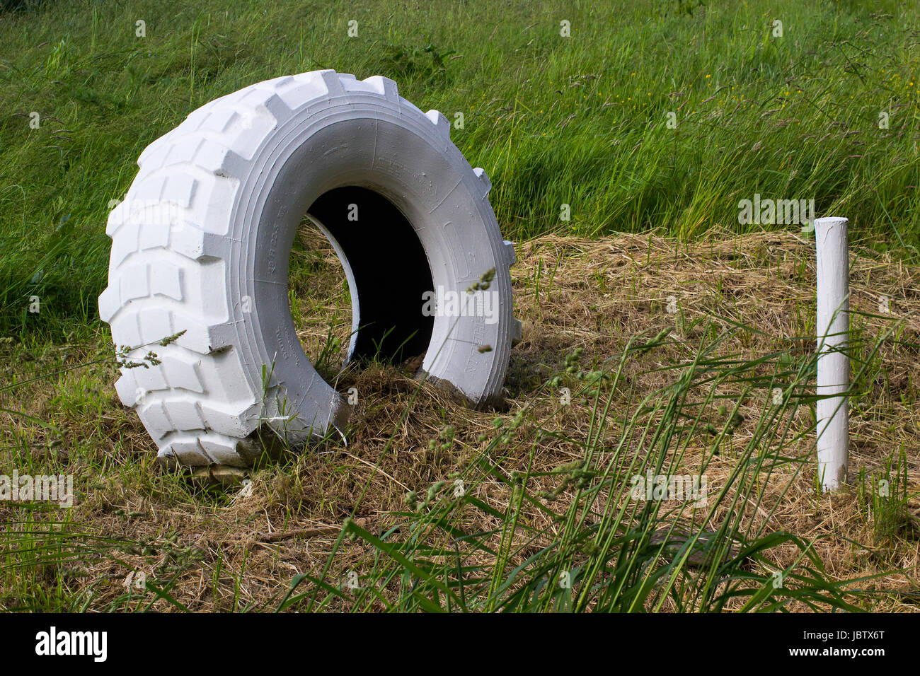 A large whitened rear axle tractor tyre and a wooden stake used as a marker in a farm field in Hampshire, England - Stock Image
