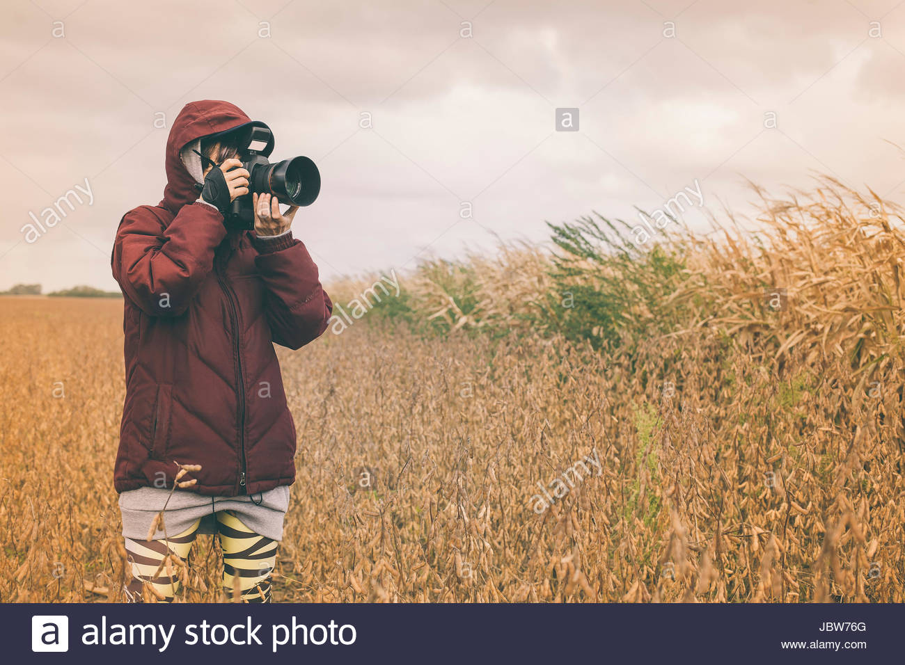 Mid adult woman, standing in field, taking photograph with SLR camera with long lens - Stock Image