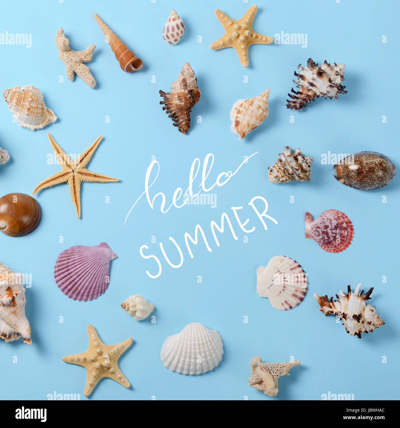 Creative layout made of different colorful seashells and greeting card - Stock Image