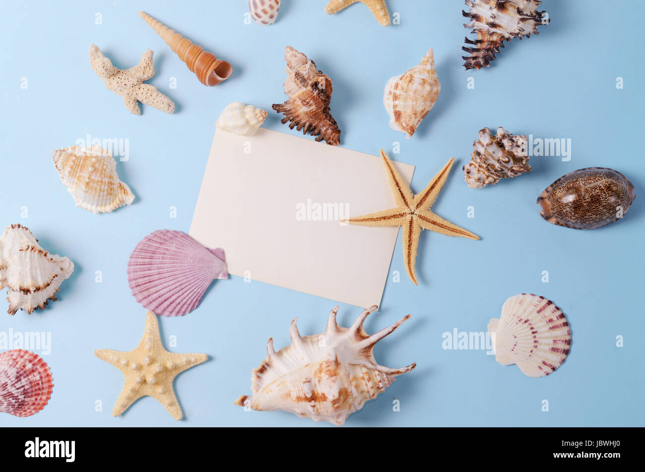 Creative layout made of different colorful seashells and greeting card on a blue background. Minimal style background - Stock Image