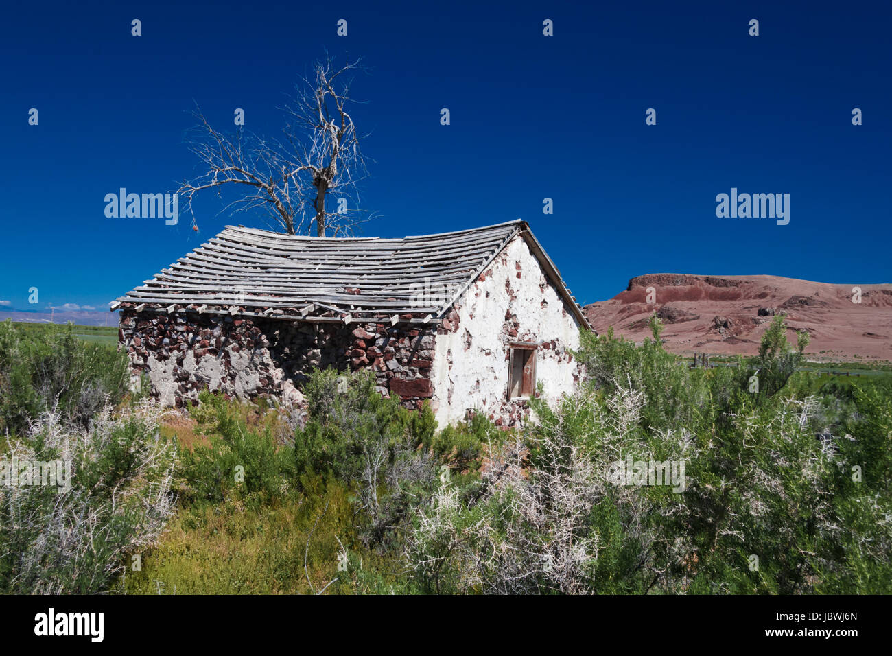 Old stone built homestead of the early 1900's, alone in a vast desert area. perfect for this arid dry country. - Stock Image