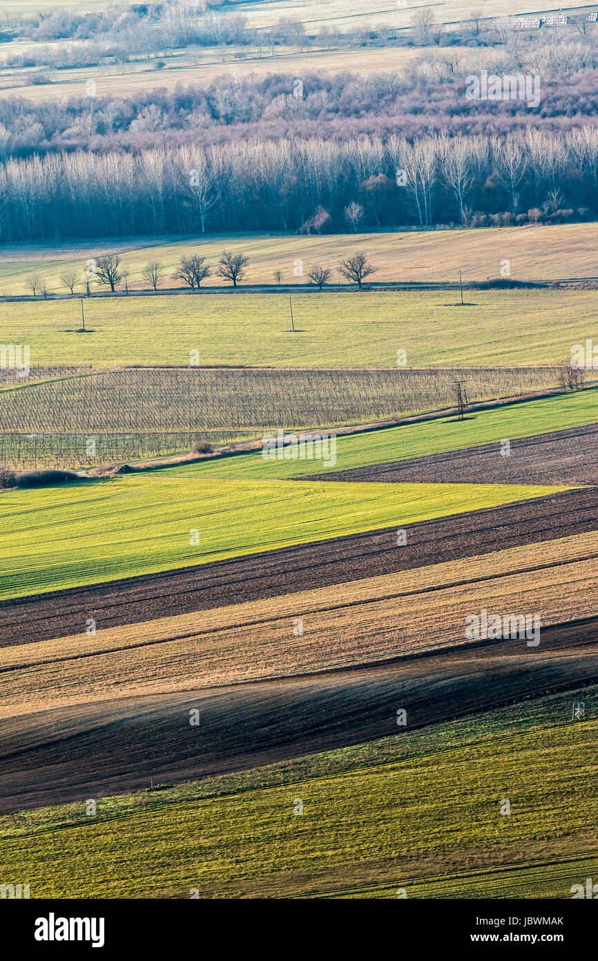 Beautiful arable land in the autumntime - Stock Image