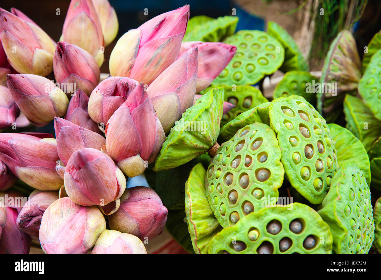 Bunch of lotus flowers for sale stock photo 145020476 alamy bunch of lotus flowers for sale izmirmasajfo Image collections