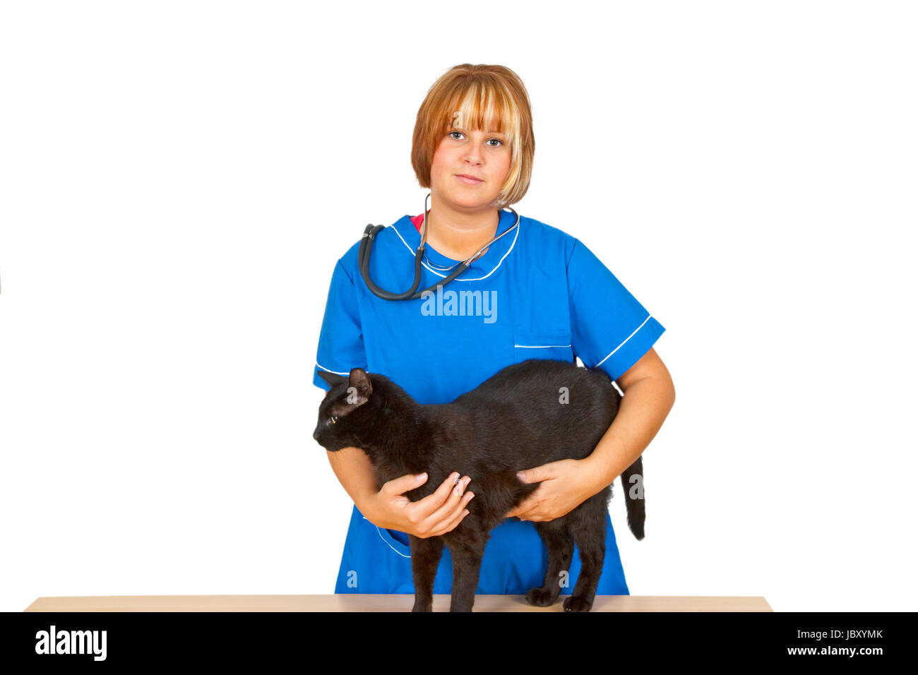 Young emale  veterinary doctor with black tomcat on white background - Stock Image