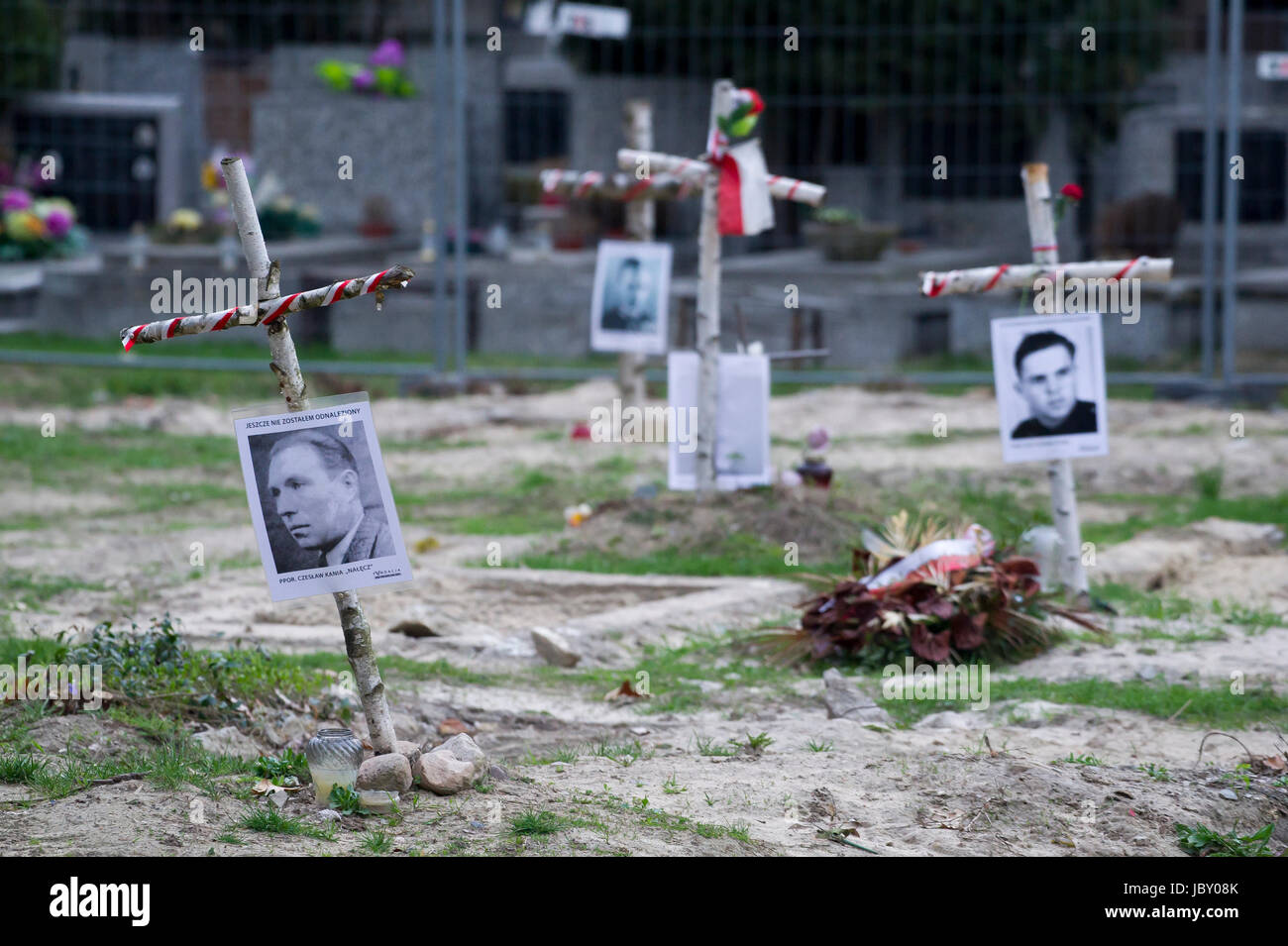 Crosses with pictures of Cursed soldiers (Zolnierze Wykleci) in Quater L (Kwatera Laczka) where are mass graves Stock Photo