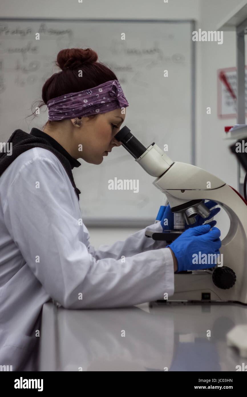 A beautiful redhead female medical or scientific researcher or student in the laboratory research on microscope - Stock Image